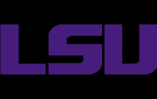 Icon - LSU