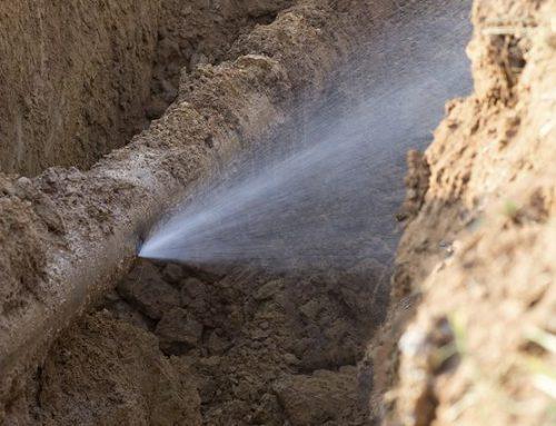 Don't Ignore Water Damage Warnings
